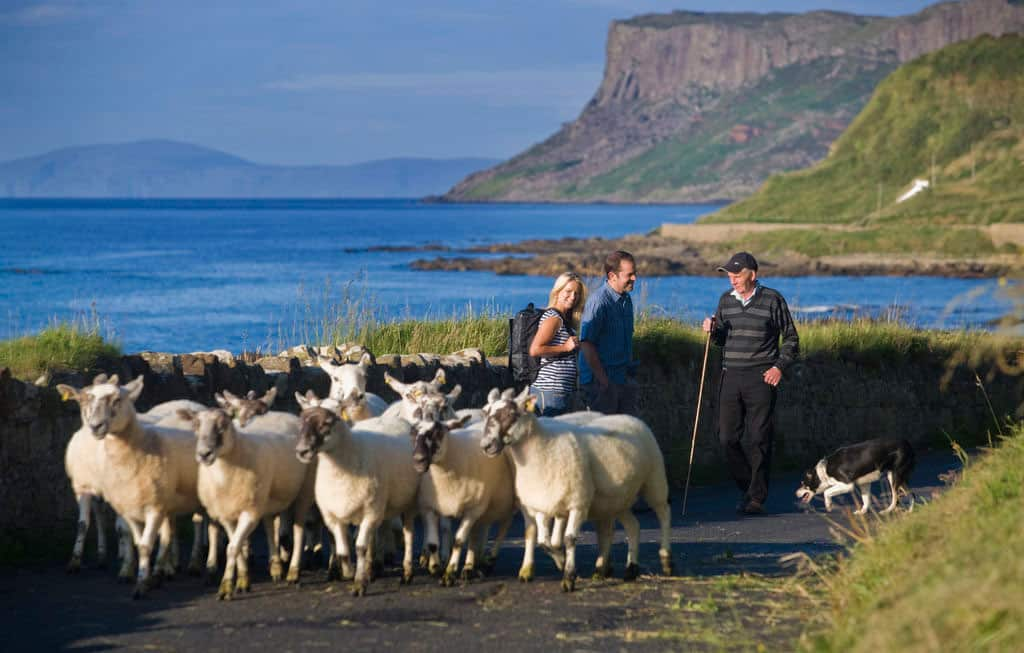 northern ireland's causeway coastal hike