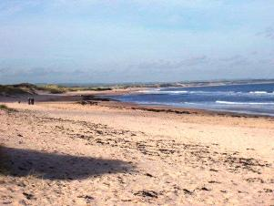 Walking the Northumberland Coast & Castle Path. Path through the sand dunes Northumberland